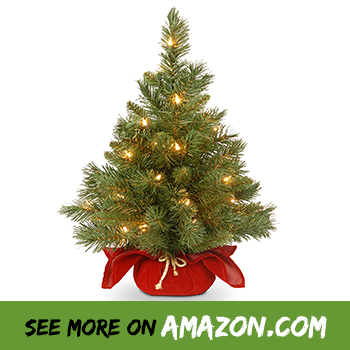 National Christmas Tree 2019.Review The Best 2ft Christmas Tree With Lights 2019