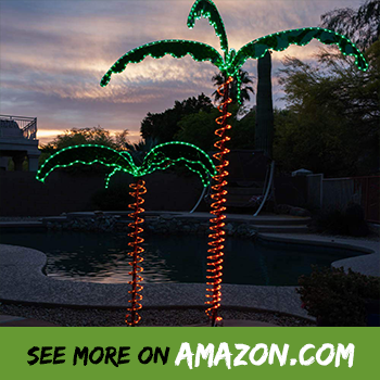 Review The Best Christmas Palm Tree 2019 Consumer Reports