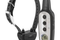 Best Electric Dog Training Collar 2020 – Consumer Reports